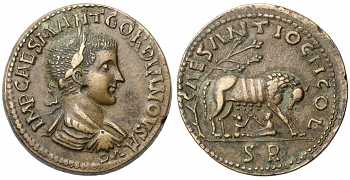 Gordian III, 238-244 AD, Pisidia, Antiochia, AE35, She-wolf and twins, struck 240-243 AD